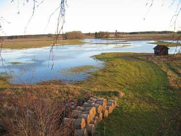 Ett oexploaterat landskap i Västmanland, Nära Västerås, Sala.